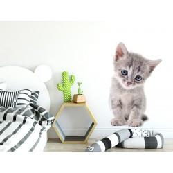 Naklejka na ścianę - kotek mruczek