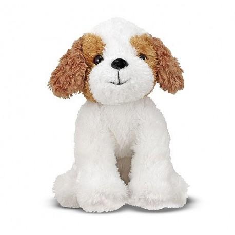 Piesek Terrier Jackson Jack Russel