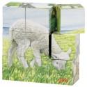 Puzzle kostki z owieczką